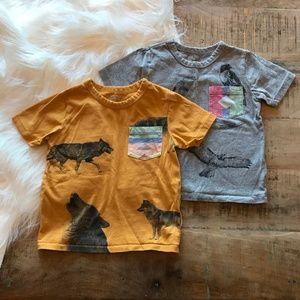 Baby Gap Wildlife Tee Shirt Bundle 2 Y Wolf & Hawk